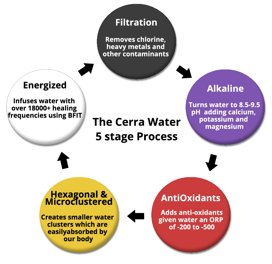 cerra 5 stage process