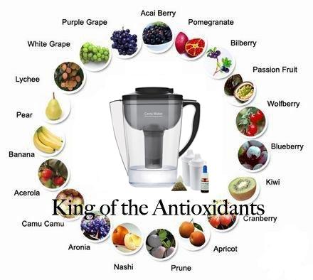 Cerra Water, Alkaline Antioxidant Water