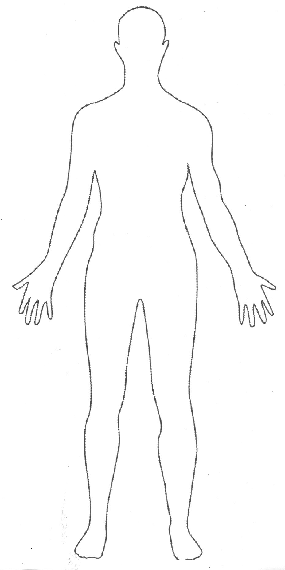 human bodyOutline Of A Human Body