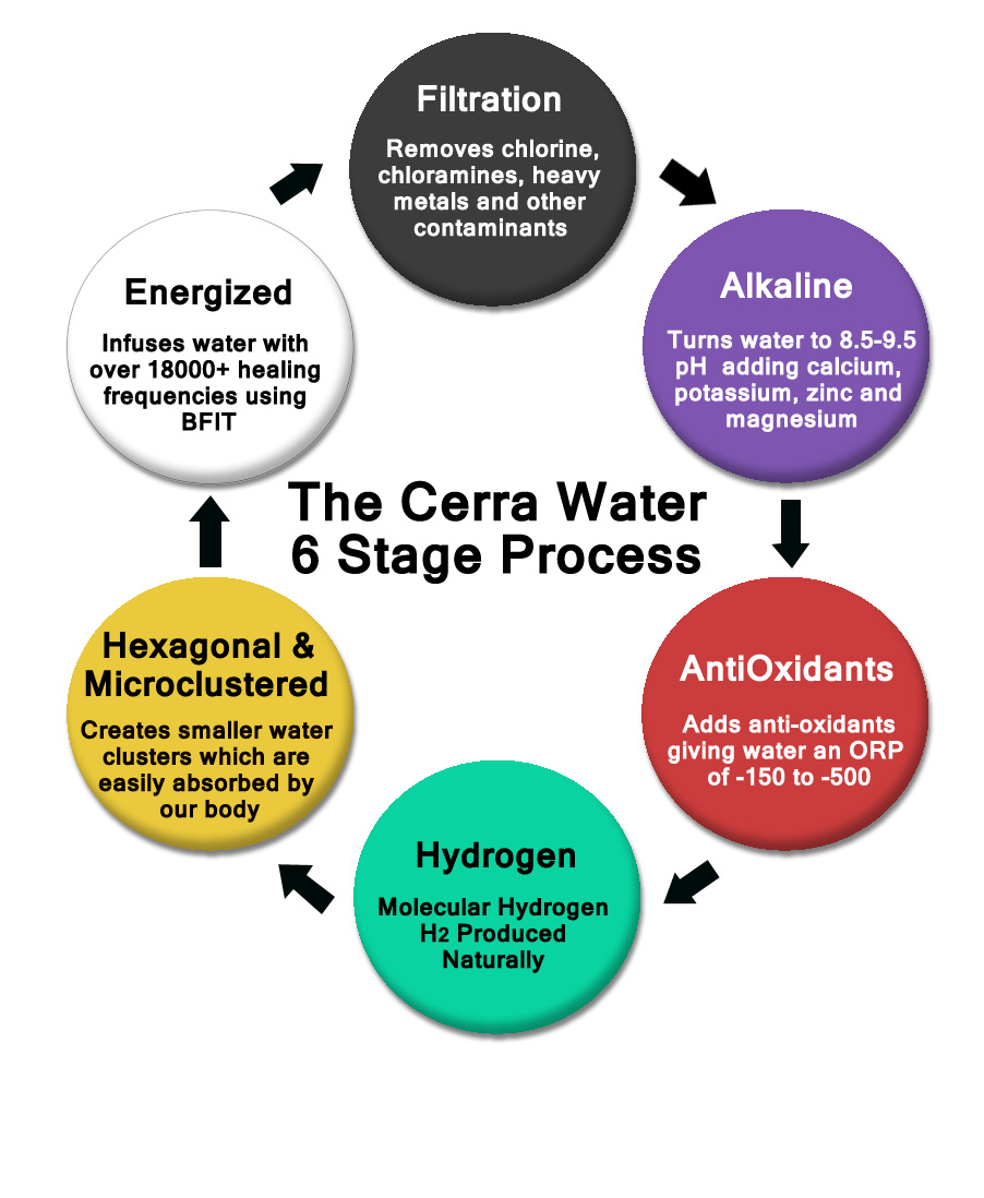 cerra 6 stage process